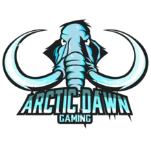 Arctic Dawn Gaming